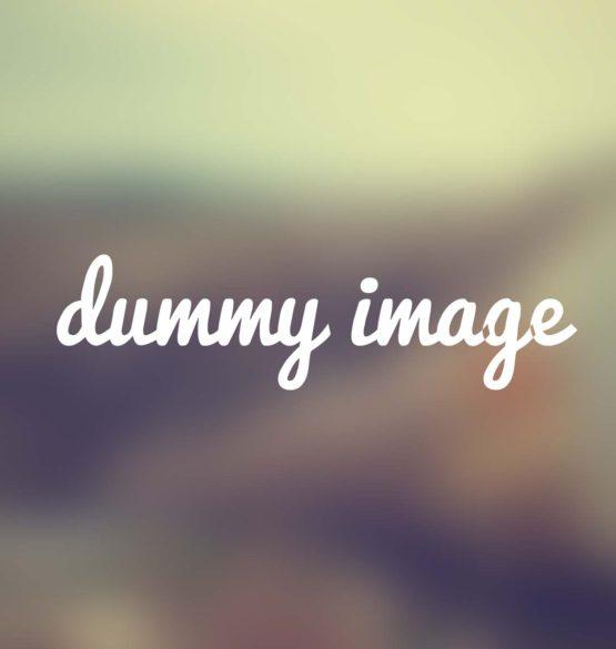 vilan_dummy_1