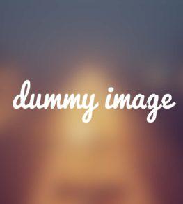vilan_dummy_2