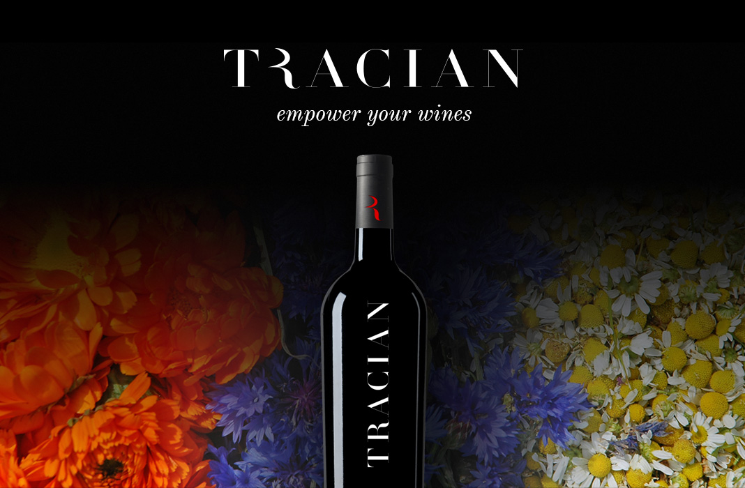 Tracian - Wine WordPress Theme